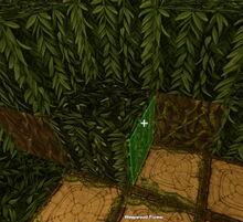 Creativerse Weepwood Flower01.jpg
