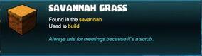 Creativerse savannah grass 2018-09-03 10-20-25-32.jpg