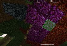 Creativerse corrupted autumnwood leaves 2019-05-03 17-41-30 0166 corrupt trees.jpg