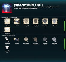 Creativerse make-a-wish tier 1 2018-12-21 05-05-438-32.jpg
