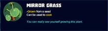 Mirror grass desc.png