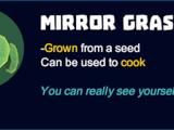 Mirror Grass