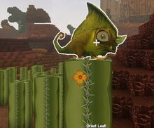 Creativerse dried leafi on a cactus01.jpg