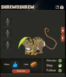 Creativerse Shrewdshrew Pet eating3003.jpg