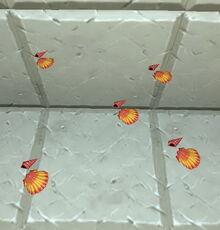 Creativerse seashells on placemat 2019-04-23 17-21-10-1649.jpg