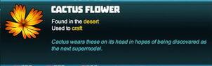Creativerse cactus flower 2018-04-15 16-07-15-41 tooltip flower.jpg