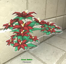 Creativerse poinsettia on placemat 2018-12-21 18-48-30-24.jpg