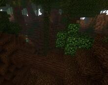 Creativerse cragwood log jungle 2019-04-10 14-36-07-1517.jpg