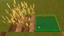 Creativerse Bog Water for Wheat01.jpg