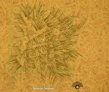 Creativerse savannah tallgrass 2018-07-03 22-07-47-32.jpg