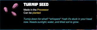 Creativerse Seeds 2017-08-11 20-55-09-97.jpg