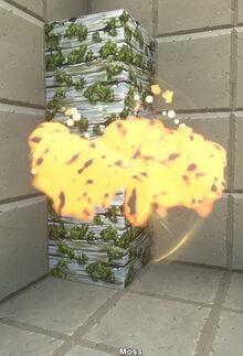Creativerse moss flammable 2019-02-01 12-27-18-19.jpg