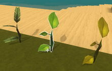 Creativerse tree saplings1.jpg