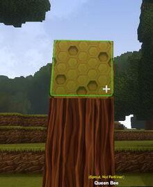 Creativerse Queen Bee placed does not need fertilizer14.jpg