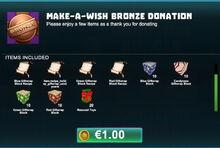 Creativerse make-a-wish bronze donation 2018-12-21 23-41-41-85.jpg