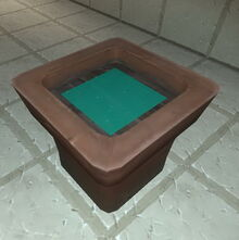 Creativerse flower pot with mineral water 2017-08-08.jpg