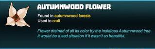 Creativerse autumnwood flower 2018-04-15 16-07-10-85 tooltip flower.jpg