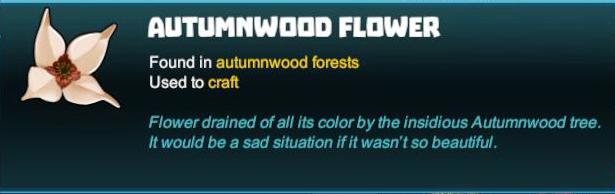 Autumnwood Flower