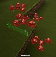 Creativerse red mushrooms001.jpg