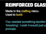 Reinforced Glass