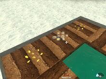 Creativerse fallow seeds02.jpg