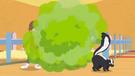 Skunk pp