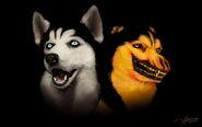 Smile wallpaper by suchanartist13 d79bprq-fullview
