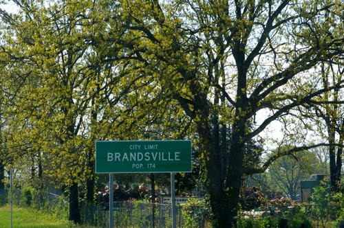 Brandsville, Missouri