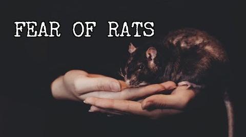 """""""Fear of Rats"""""""