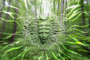 Shpongle Woods by lokispace