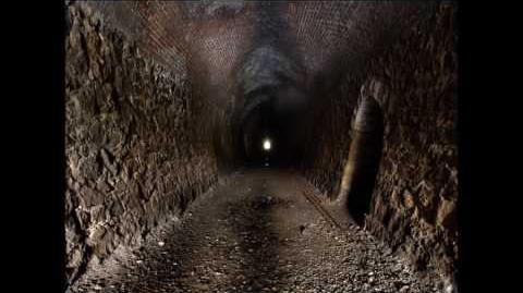 The Solder part 7 The tunnel (Wicker Saga)