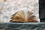 Verdammungsmärchen Buch