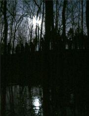 Zombie tom 2005.jpg