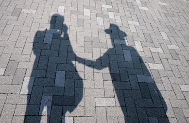 Shadow of a Shade
