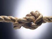 Tangled Knot.jpeg