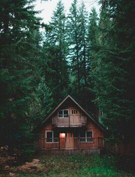 Una cabaña tranquila en la profundidad del bosque.jpg