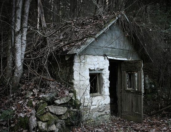 The House Deep in the Woods