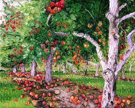 Apple orchard 2 jpg resized.jpg