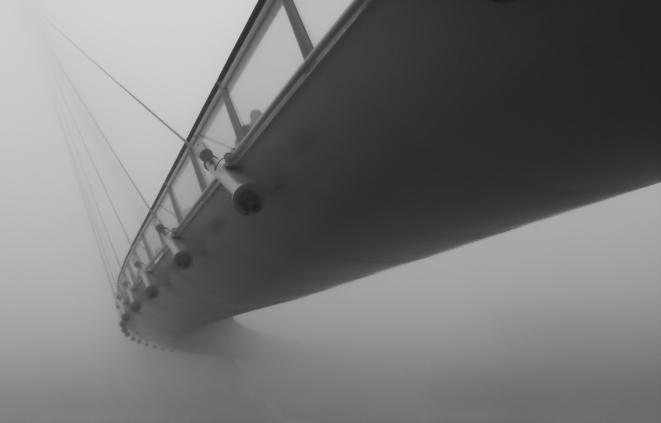 El animal del puente