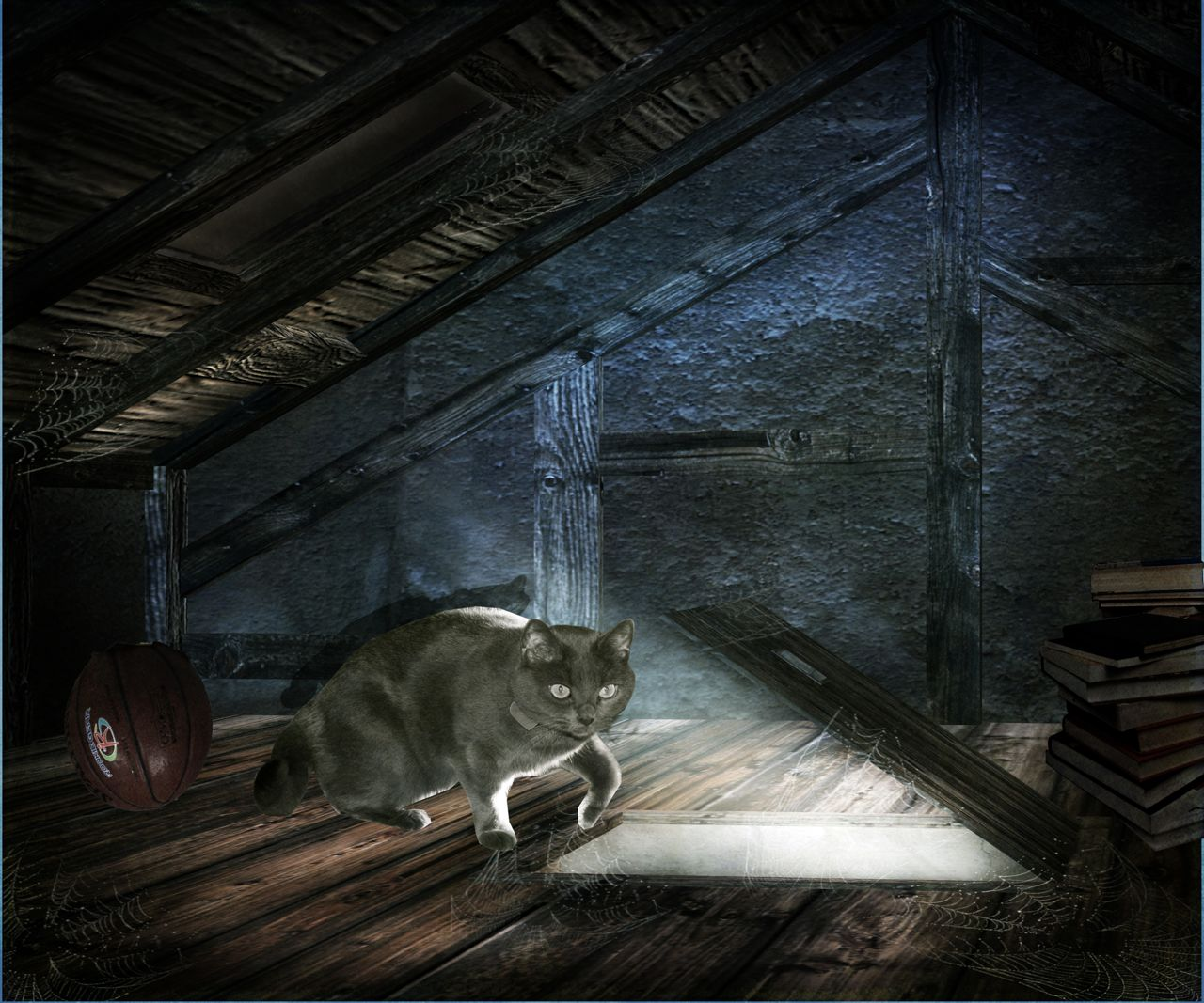 The Cat in the Attic