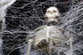 Arañas y telarañas