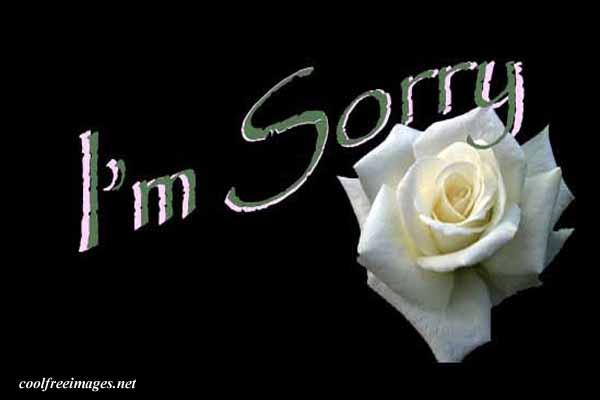 (Nerf) King-Charles/Sorry