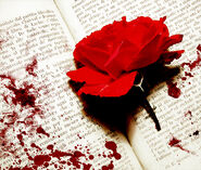 Bloody-Rose-and-Diary-random-18955149-700-593
