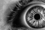 Eye close.jpg