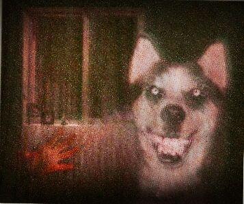 Smile-dog.jpg