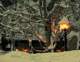 Winter Night in a Park.jpg