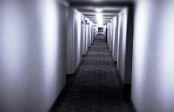 Endless Hallway.jpg