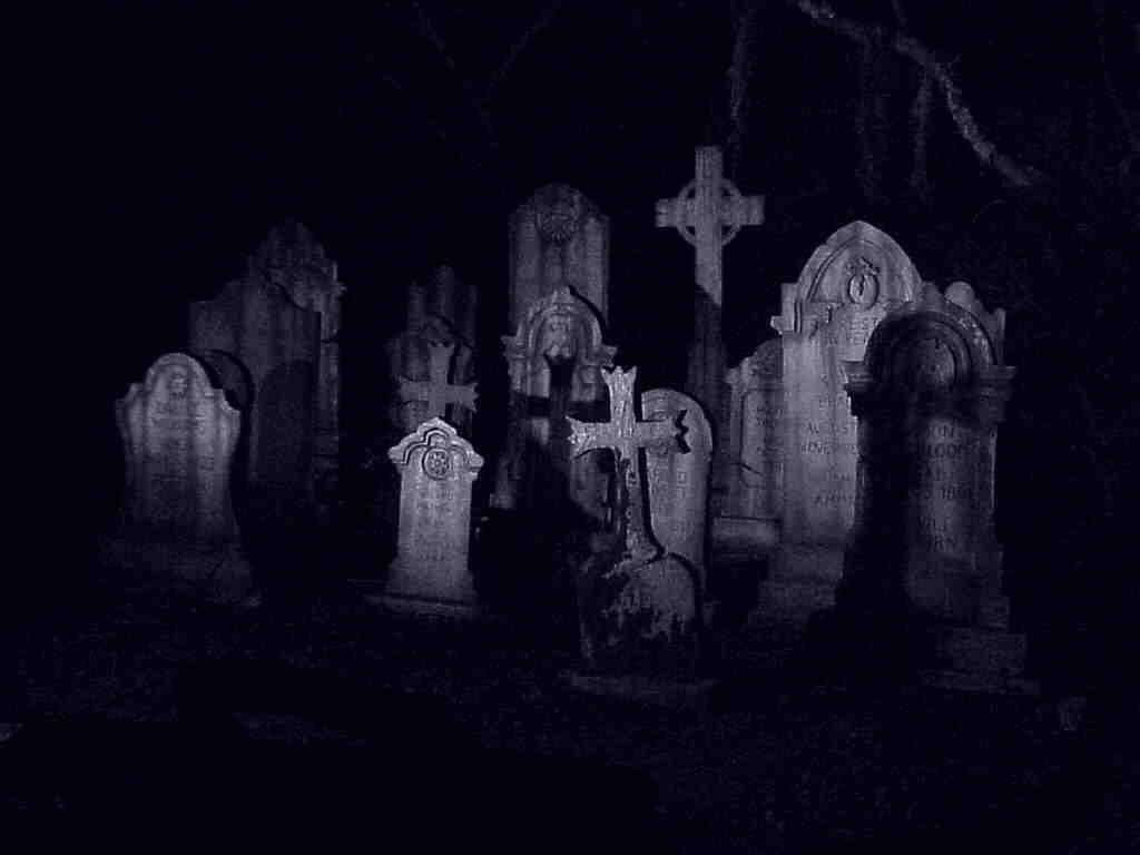 The Reason We Bury the Dead