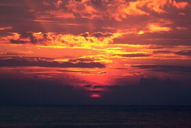 Blood artist sunset.jpeg