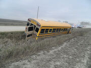 The School Bus.jpg